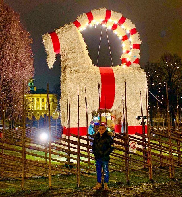 Glad första advent till er alla ?#advent #gävle #gävlebocken #gladförstaadvent